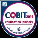 COBIT2019授权