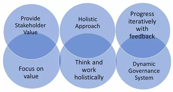 图6.1指导原则